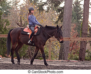 girl riding a Standard breed horse - a long haired teenaged...