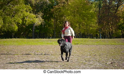 girl running with black labrador dog at autumn park - Young...
