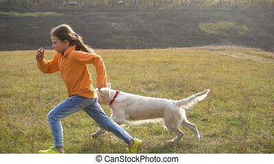 Girl running with golden retriever at field - Young girl...
