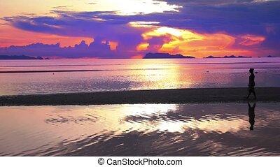 Girl Silhouette Stroll along the Beach During Impressive Sunset.