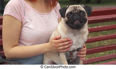Girl sitting on a bench and stroking her pug
