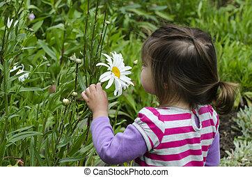Girl smells daisy flower