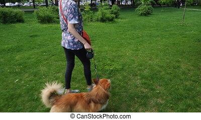 girl training a dog