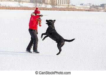 Girl training the black labrador at winter park
