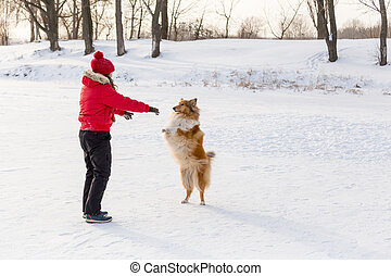 Girl training the collie dog at winter park