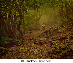 girl walking on the foggy woods - Girl walking on the foggy...
