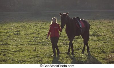 Girl walks through the meadow with a brown stallion. Slow...