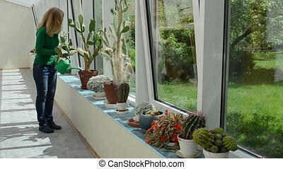 girl water cactus plant