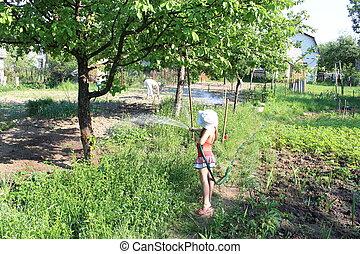 girl watering a kitchen garden
