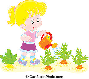 Girl watering carrots - Little girl watering vegetables in a...