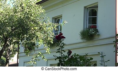 girl watering flower in pot hanging on second floor of house. 4K
