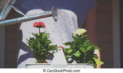 Girl watering flowers from watering can.
