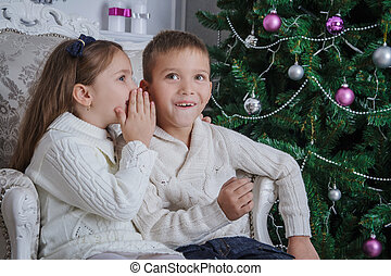 Girl whispered to her brother what to ask for Santa