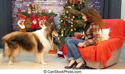 Girl with a dog playing near a Christmas tree