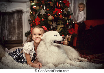 Girl with a white dog near the Christmas tree