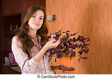 girl with oxalis flower in pot