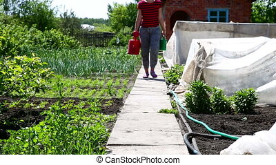 Girl with red watering can - Girl with watering can in...