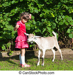 girl with the goat in the summer