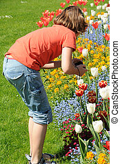 girl with tulips - young girl in a field of tulips