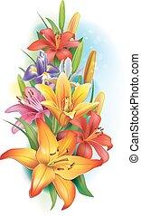girlanda, o, lilie, a, kosatec, květiny
