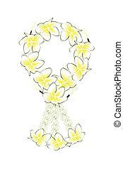 girlande, frangipanis, farben, plumeria, frisch, weißes