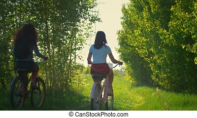 Girlfriend cyclists leave the path of the green thicket, a...