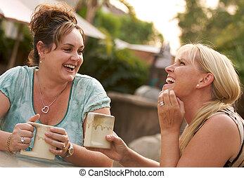 Girlfriends Enjoy A Conversation - Two Girlfriends Enjoy A...