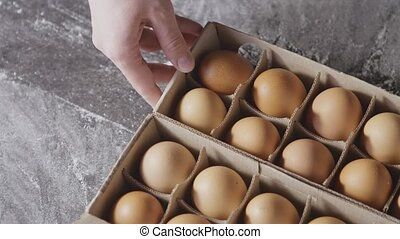 Girl's hands are taking a fresh eggs from paper tray, on a ...