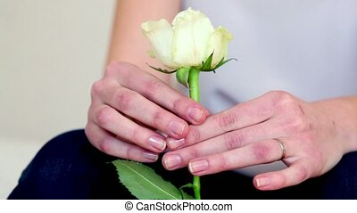 Girls hands holds and rotate white rose, closeup view
