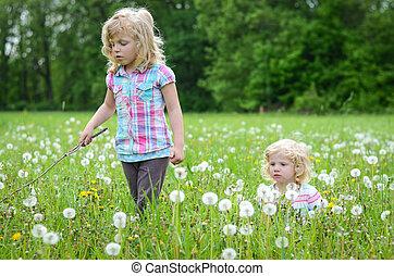 girls in a dandelion meadow
