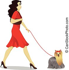 Girls is walking yorkshire terrier vector illustration
