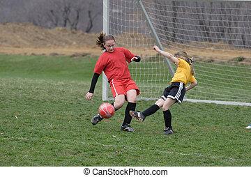Girls on Soccer Field - Girls fighting over ball on soccer ...