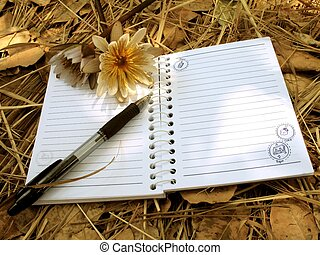 A blank open notebook resting on a blanket of dry leaves, with two flowers and a pen and some sunshine falling on the scene, evoking a romantic teenage girl's diary