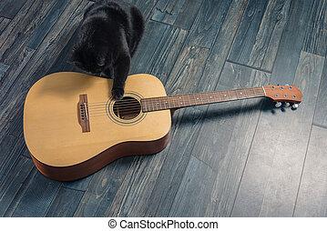 gitara, kot, czarnoskóry, posiedzenie