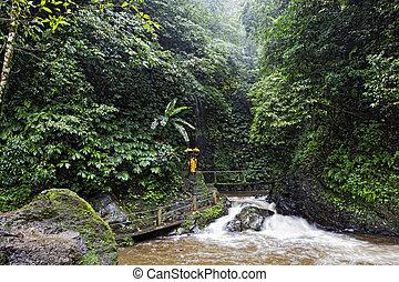Gitgit Waterfall is a beautiful waterfall located in plateau...