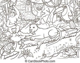 giungla, foresta, animali, cartone animato, libro colorante