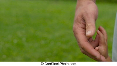 Give me a hand - A father and son holding hands on nature