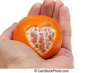 giving tangerine heart in hand over white
