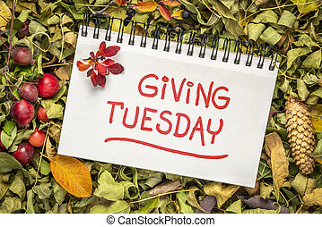 Giving Tuesday handwriting in an art sketchbook - Giving ...