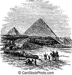 giza, engraving., pyramides, vendange