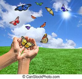 glücklich, hell, landschaftsbild, mit, vlinders