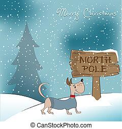 glücklich, hund, karte, weihnachten