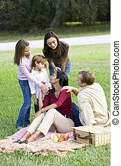 glücklich, modern, multikulturell, familie, genießen, a, picknick
