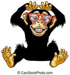 glücklich, schimpanse, karikatur, brille