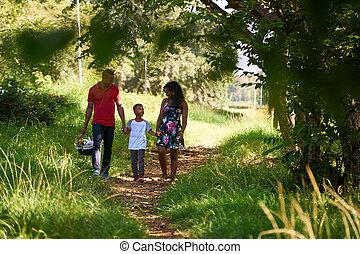 glücklich, schwarze familie, gehen, in, stadt- park, mit, picknicken korb