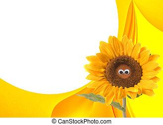 glücklich, sommer, sonnenblume, hintergrund
