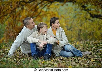 glückliche familie, park, sitzen