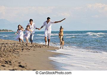 glückliche familie, spielende , mit, hund, auf, sandstrand