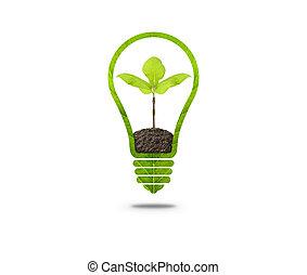 glühlampe, mit, pflanzenkeim, innenseite