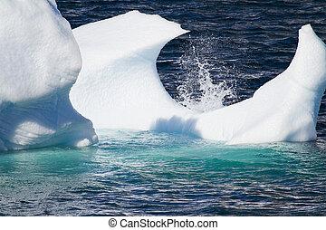 glace, antarctique, flotter, -